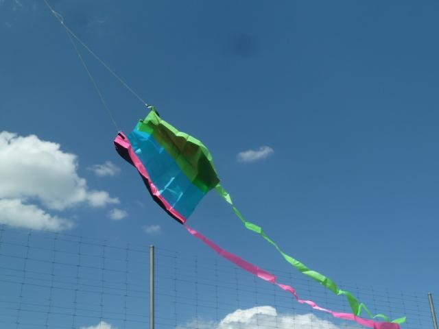 Der-Wind21