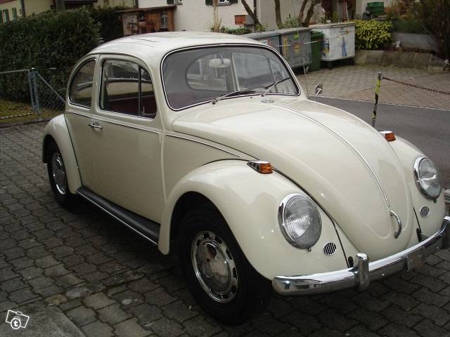 vw-kaefer-6459377653