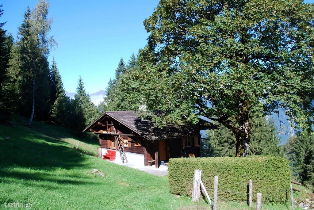 Ferienhaus, Interlaken, Alm-Öhi