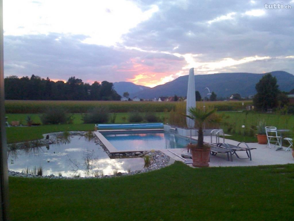 Pool, Schwimmteich, Haus mit Pool