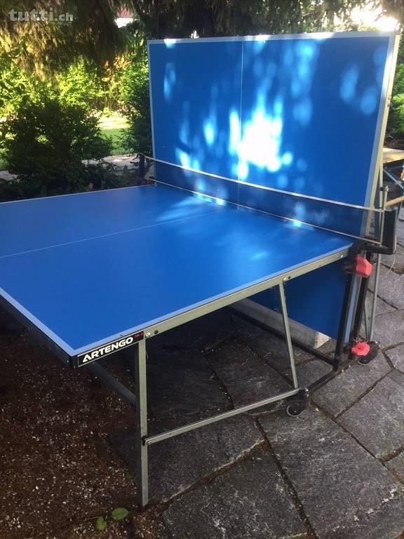 Tischtennis spielen, Tischtennisplatte